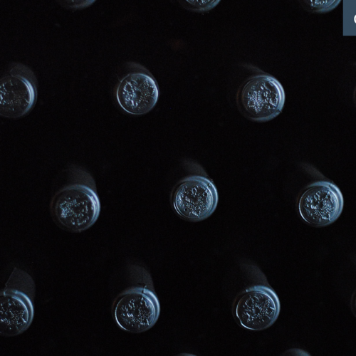 How to store your wine bottles at home
